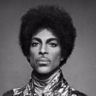 CELEBRATION 2017 Kicks Off At Prince's Paisley Park Honoring His Life And Legacy