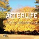 Americana Music Legend Tokyo Rosenthal Releases 'Afterlife'