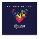 'Because of You'... The James Kob Experience Single Out Now