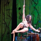 BWW Review: TARZAN at PMT Anchored by Strong Performances, Lots of Rope