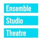 EST and Radio Drama Network to Present WHERE DID WE SIT ON THE BUS?