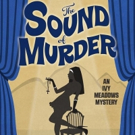 BWW Review: THE SOUND OF MURDER by Cindy Brown