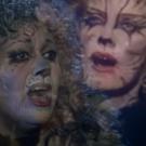 SHOWTUNE SHUFFLE: Grizabellas Everywhere Sing a CATS Classic... 'Memory'