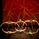 Valencia College Presents Annual Spring Dance Concert, 3/25