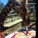 "Oakland Zoo Presents ""Meet the Animal Artist"" Experience"