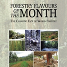 Forestry Expert Shares 'Forestry Flavours of the Month'