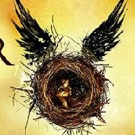 VIDEO: Holders of Re-Sold Tickets Being Denied Entry To HARRY POTTER AND THE CURSED CHILD