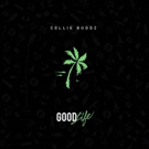 Collie Buddz New Single 'Good Life' Lyric Video Out Now