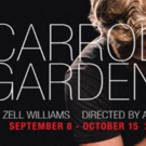 A. Zell Williams' CARROLL GARDENS at 16th Street this Fall