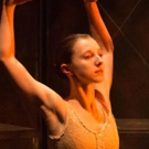 BWW Review: Festival Ballet's Stunning CARMEN, Up Close on Hope