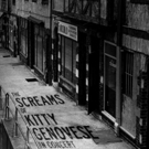 NYMF Hit THE SCREAMS OF KITTY GENOVESE Set for Feinstein's/54 Below This Fall Photo