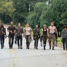BWW Preview: Will it be the Season of the Wolves of THE WALKING DEAD?