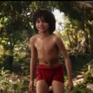 VIDEO: Bill Murray & More in All-New THE JUNGLE BOOK Featurette