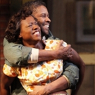 Viola Davis to Compete in Best Supporting Actress Category for FENCES Adaptation