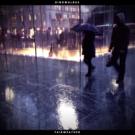 Brooklyn Psych Rockers DINOWALRUS Call for 'Light Rain' via CLRVYNT