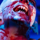 BWW Review: Farcical BAT BOY THE MUSICAL is a Blood-Sucking 'Hoot' at Blank Canvas