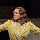 BWW Review: DEATH OF A SALESMAN Effects Spring Green