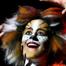 BWW Preview: Columbus Children's Theatre's CATS to Bring New Interpretation of the Polarizing, Nostalgic Show