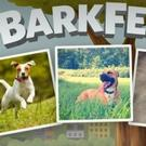 Nat Geo WILD Announces #BarkBreak Adoptable Shelter