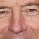 Bryan Cranston, Steve Carrell, & Laurence Fishburne Sign On For Richard Linklater's New Film