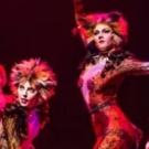 BWW Review: Charming CATS Revival Is Packed With Terrific Performances