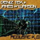 James Williamson + Deniz Tek Premiere New 'Acoustic K.O. EP Via Dangerous Minds