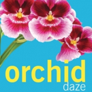Escape to the Tropical World of ORCHID DAZE at Atlanta Botanical Garden
