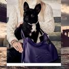 PHOTO: Lady Gaga Helps Launch New 'Coach Pups' Campaign