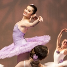 Metropolitan Ballet Company 20th Anniversary Gala Performance Set for 6/4