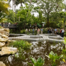 Photo Flash: Mounts Botanical Garden Dedicates New Windows on the Floating World