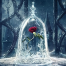 Photo Flash: First Look at Poster Art for Disney's BEAUTY AND THE BEAST!