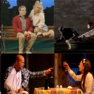 BWW TV: The Year that Was- Celebrating the Plays of 2015!