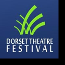 Dorset Theatre Festival Presents WHEN JOHNNY COMES HOME Local Play Reading Today