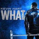Kevin Hart: Zum ersten Mal live in Deutschland
