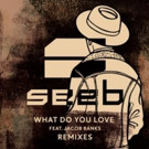DJ/Producer Trio Seeb's 'What Do You Love' (Remixes) Out Now