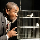 BWW Interview: With CHARLIE PARKER'S YARDBIRD, Tenor Lawrence Brownlee Goes from Bel Canto to Bebop