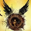 VIDEO: Fans Countdown For Midnight Release of HARRY POTTER AND THE CURSED CHILD Script