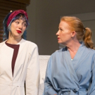 BWW REVIEW: Holzman's CHOICE Receives World Premiere at Boston's Huntington Theatre
