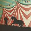 Travel Through Time with CIRCUS FLORA 6/1-25