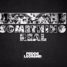 Fedde Le Grand Releases Full Studio Album 'Something Real'