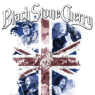 Black Stone Cherry Caps Off 2015 with Success of Live DVD/CD THANK YOU: LIVIN' LIVE