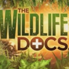 Award-Winning Television Series THE WILDLIFE DOCS Renewed for Fourth Season on ABC