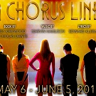 BWW Review: A CHORUS LINE at the Playhouse - Carla Sankey Commands the Stage