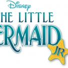Pittsburgh CLO Academy Announces Cast of THE LITTLE MERMAID, JR.