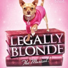 South Bend Civic Theatre Presents LEGALLY BLONDE: THE MUSICAL