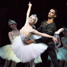 BWW Review: BIRMINGHAM ROYAL BALLET'S SWAN LAKE Still Stunning After 25 Years