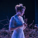 BWW Review: LitMoon's THE GLASS MENAGERIE Shows Life After the Bough Breaks