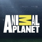 Animal Planet Uveils 2017-18 Upfront Programming Slate
