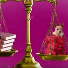 STAGE TUBE: Sneak Peek at LEGALLY BLONDE at Music Circus