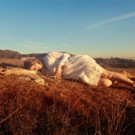 Miranda Lee Richards to Release New Album 'Existential Beast' 6/16